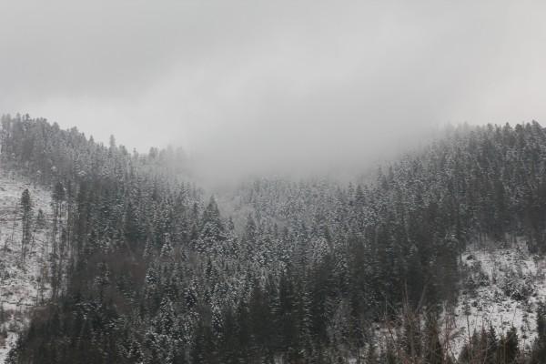 Верхний быстрый - зимний отдых в Межигорье